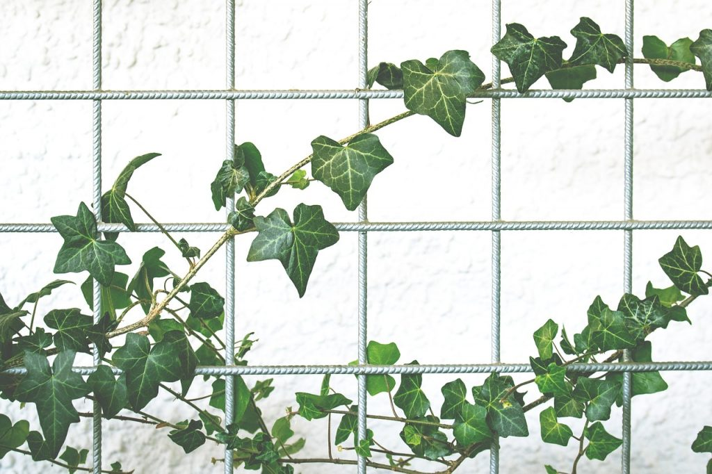 Plantevæg i stål
